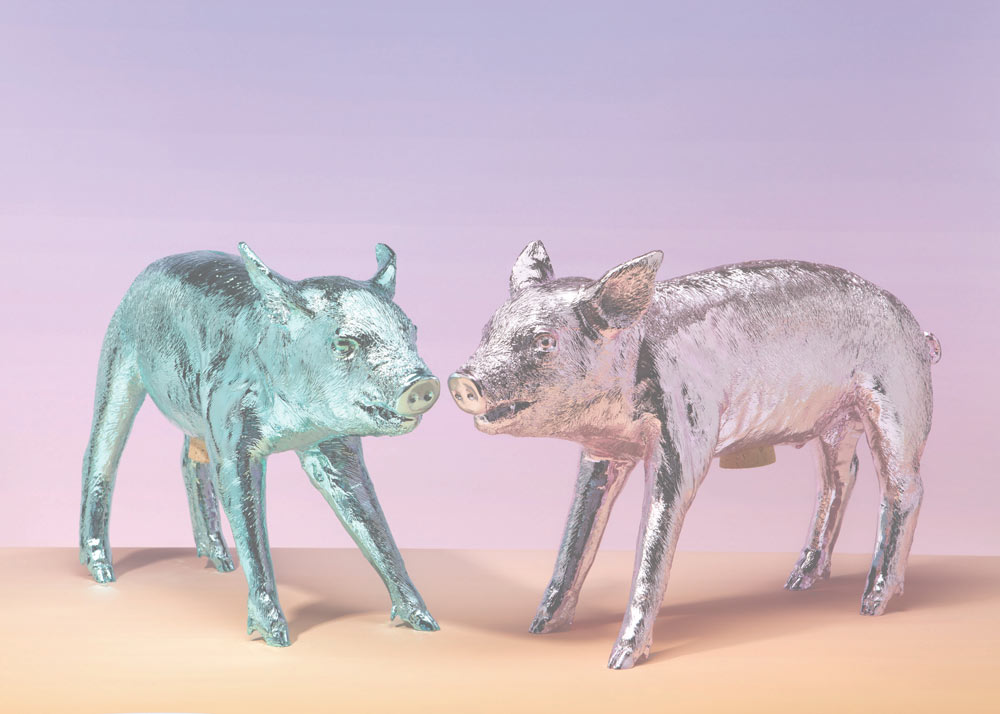 Bank in the form of a pig - metallic