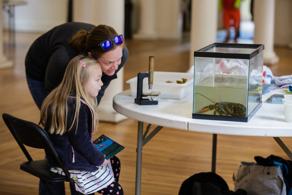 Salem Sound Coastwatch provided a touch tank