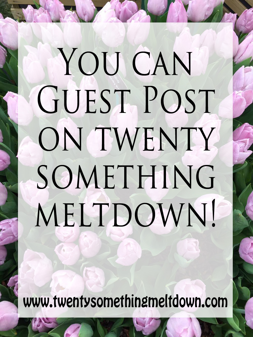 Guest Blog on Twenty Something Meltdown.