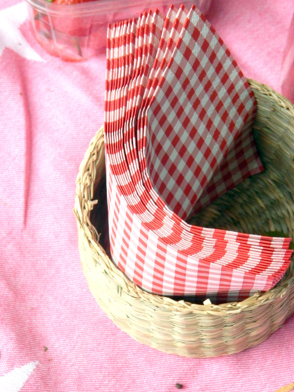 Ain't quite a picnic without red and white checked right?