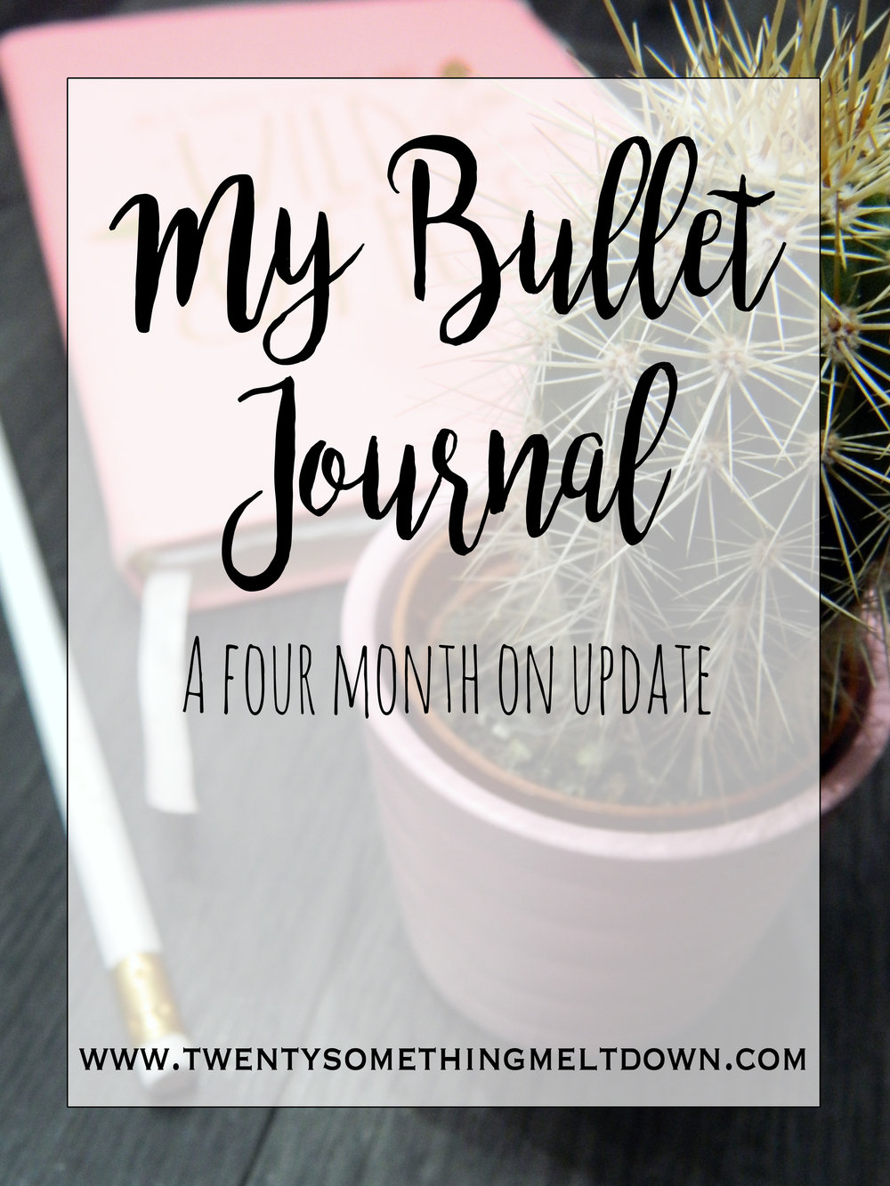 My Bullet Journal: A Four Month On Update.