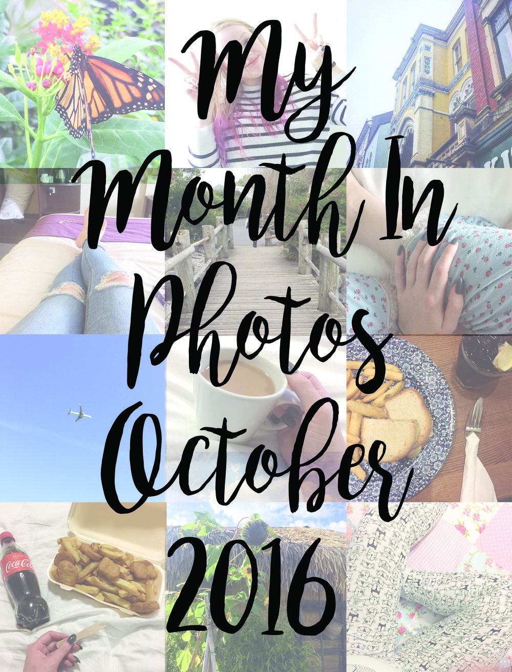 My month in photos - October 2016.