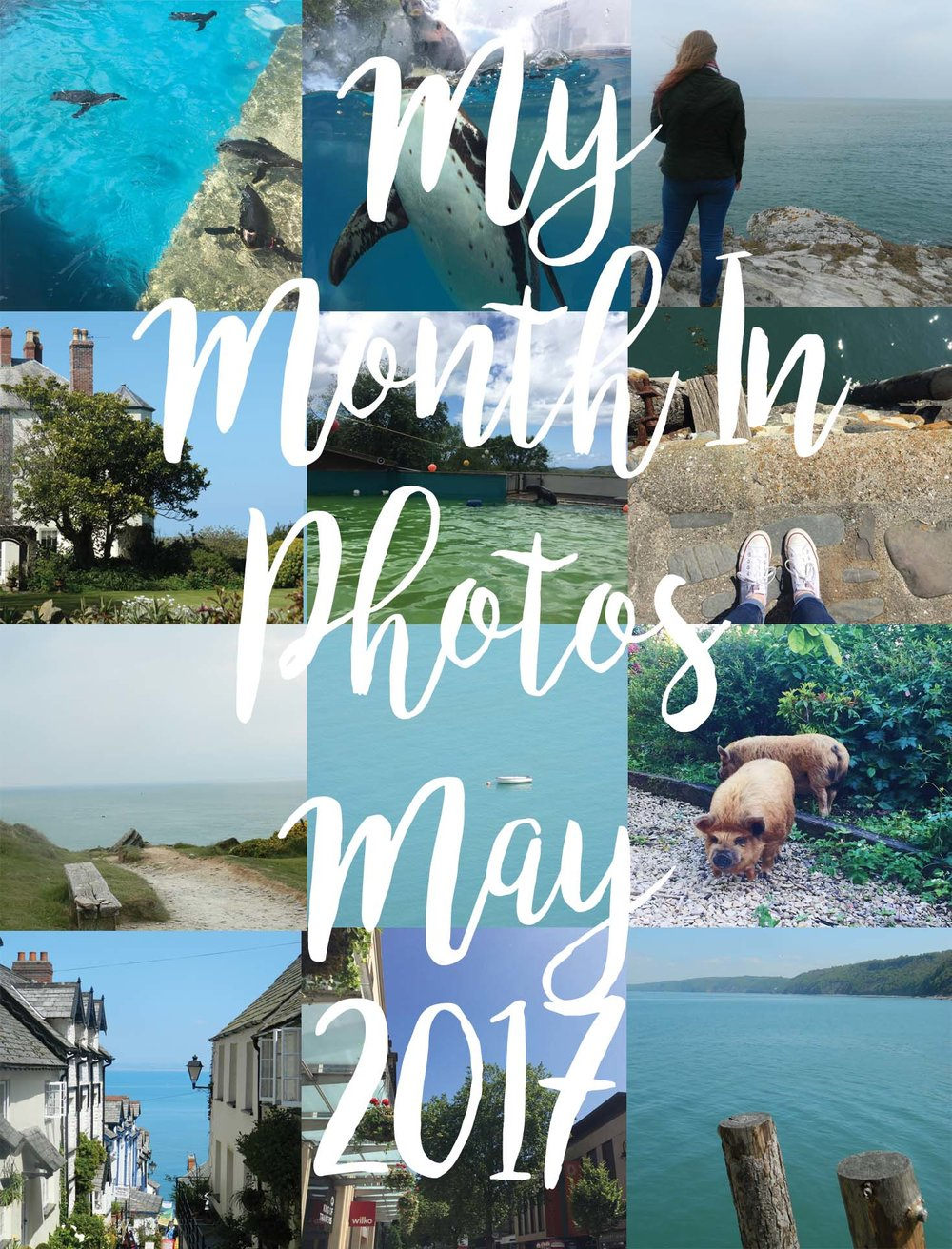 My Month In Photos - May 2017