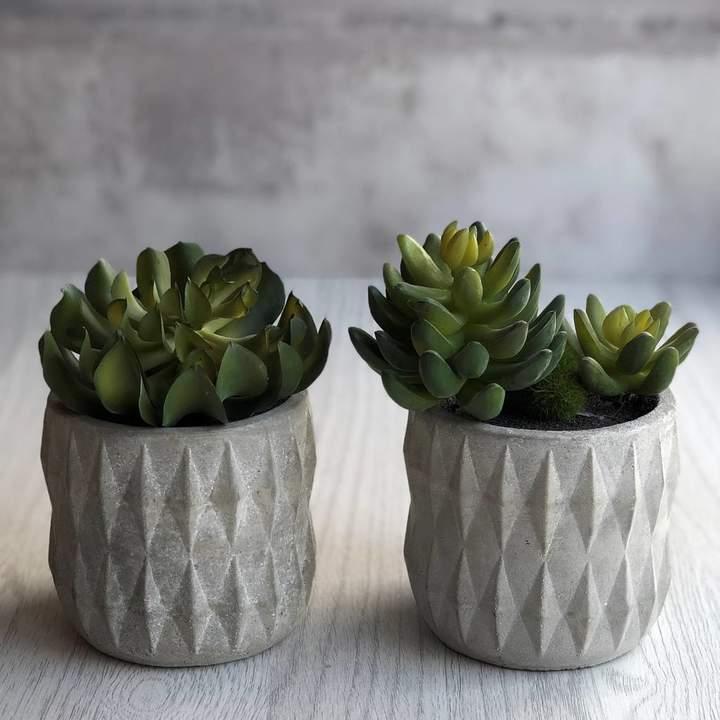 Geometric Succulent Holder