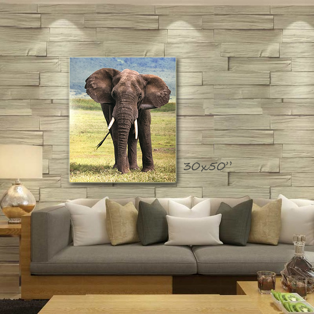 elephant wall blank.jpg