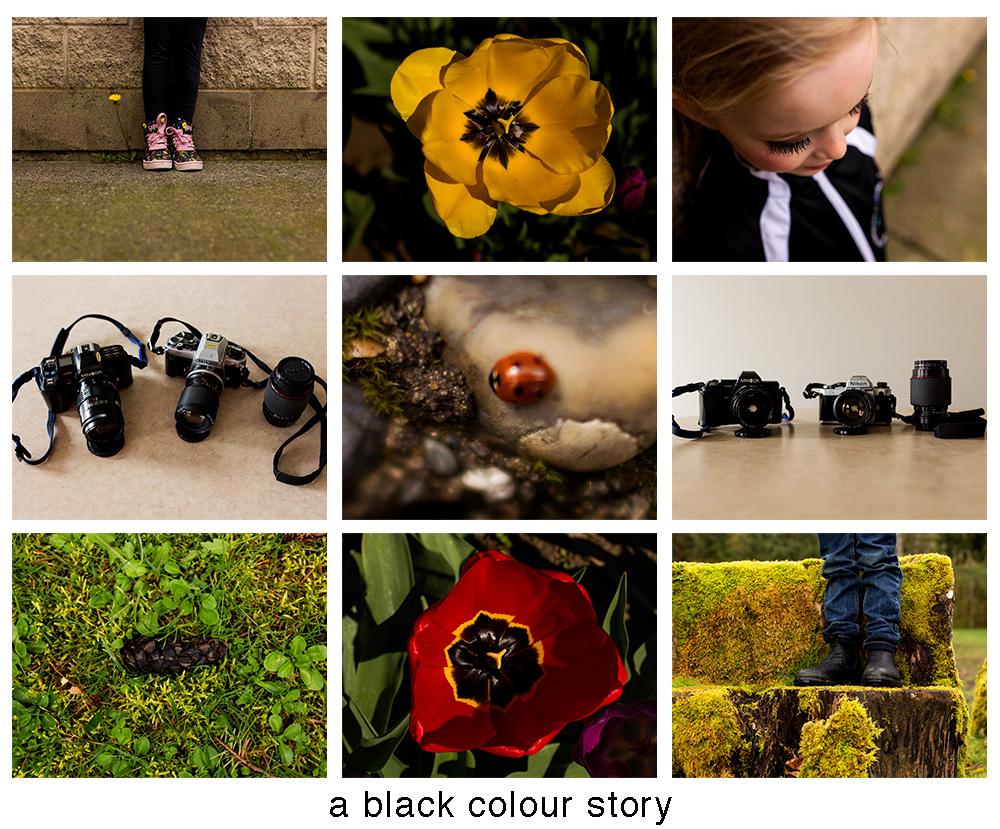 April - Black.jpg