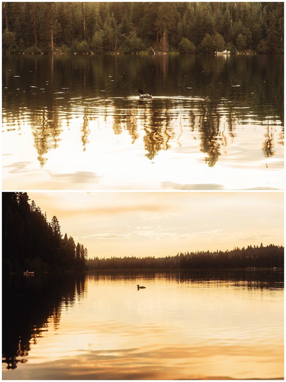 Fawn Lake_130.jpg
