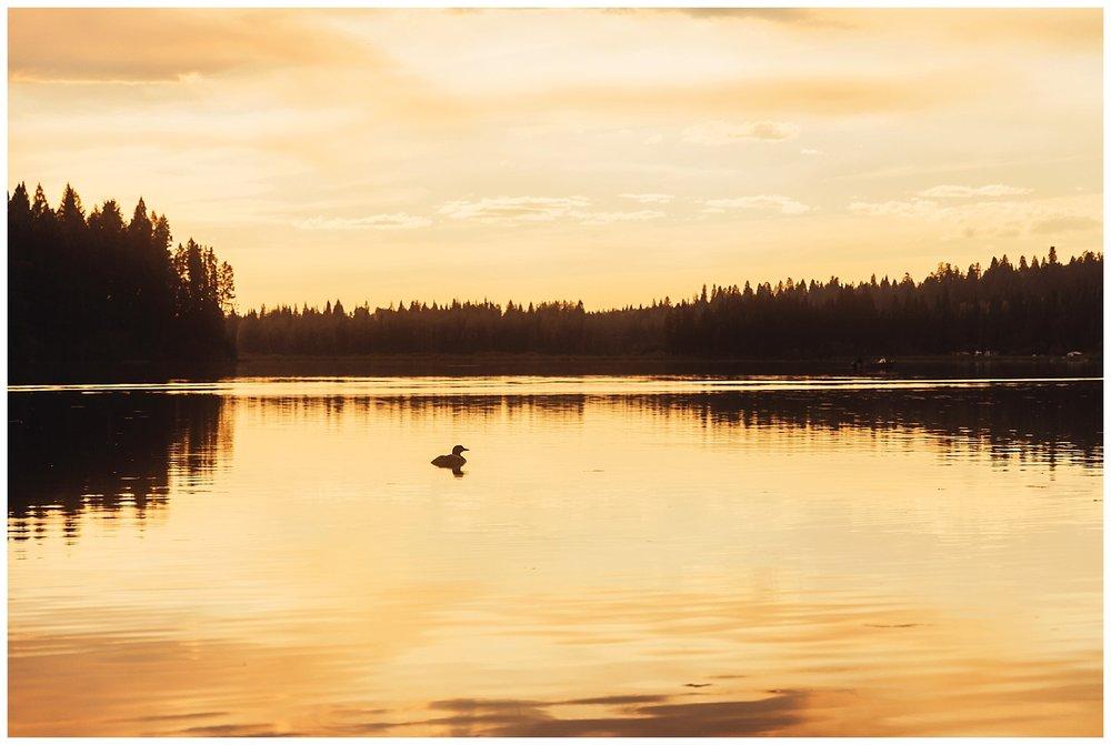 Fawn Lake_132.jpg