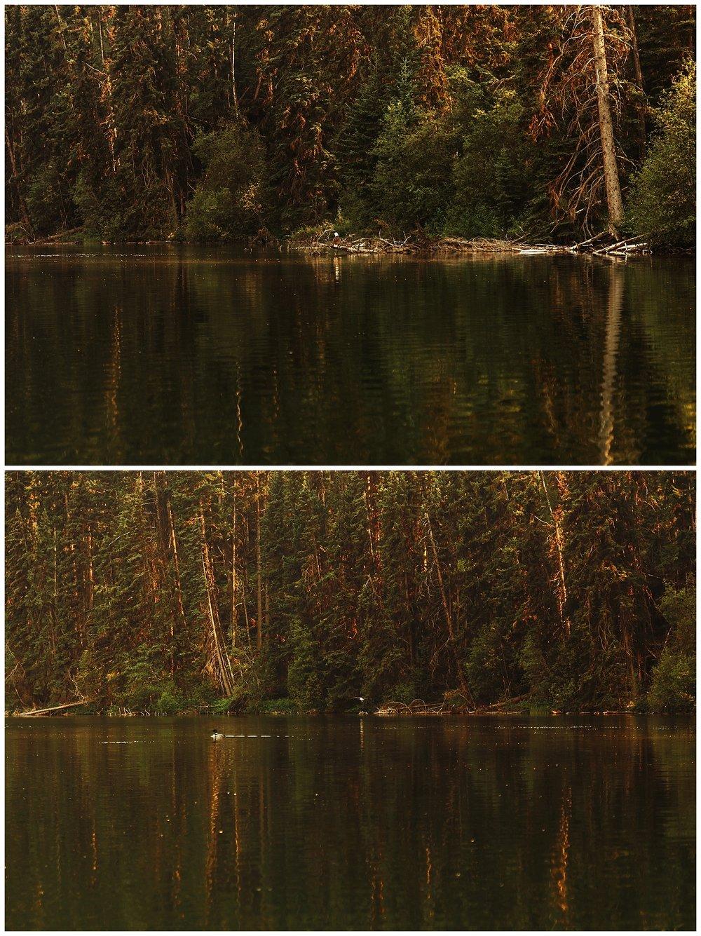 Fawn Lake_156.jpg