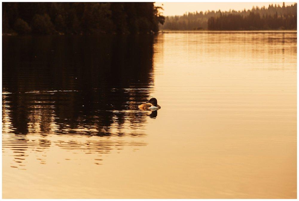 Fawn Lake_159.jpg