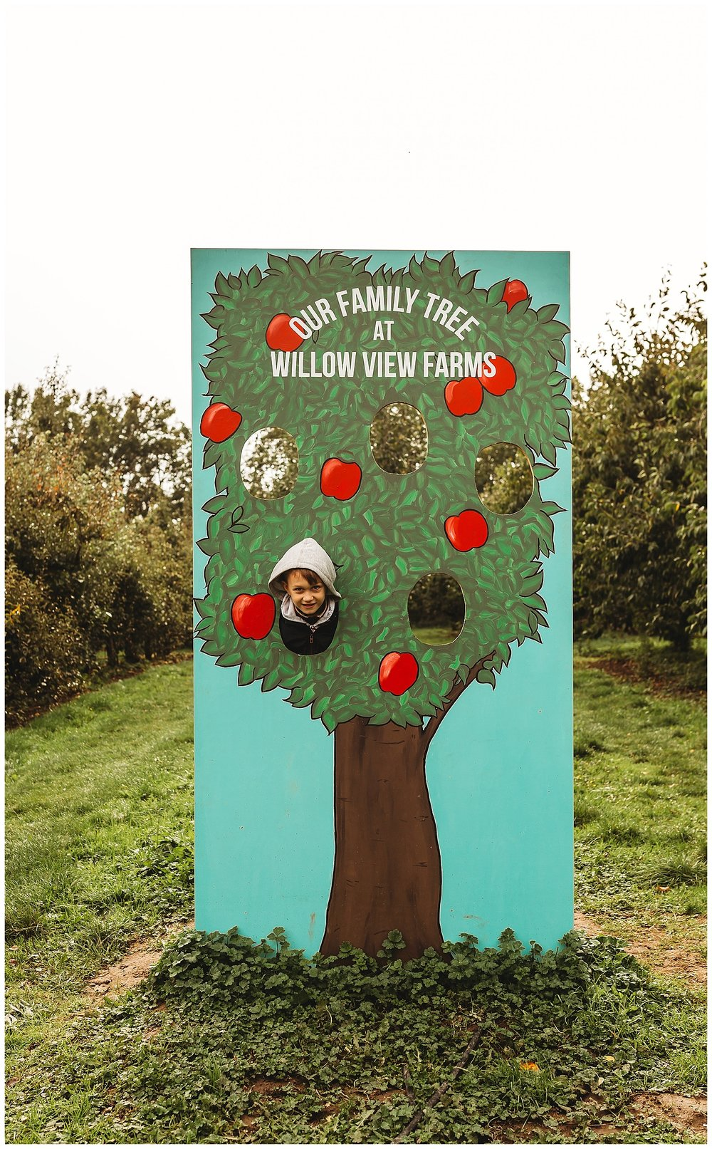 Willow View Farms_4.jpg