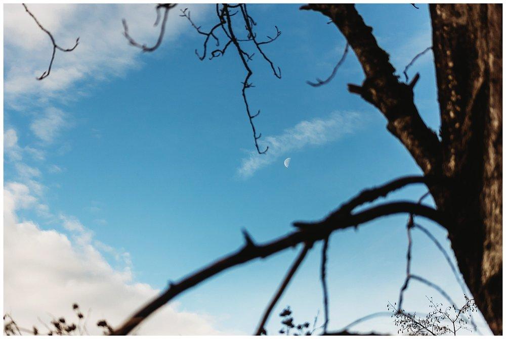 Chilliwack BC Anna Hurley Photography 1.jpg