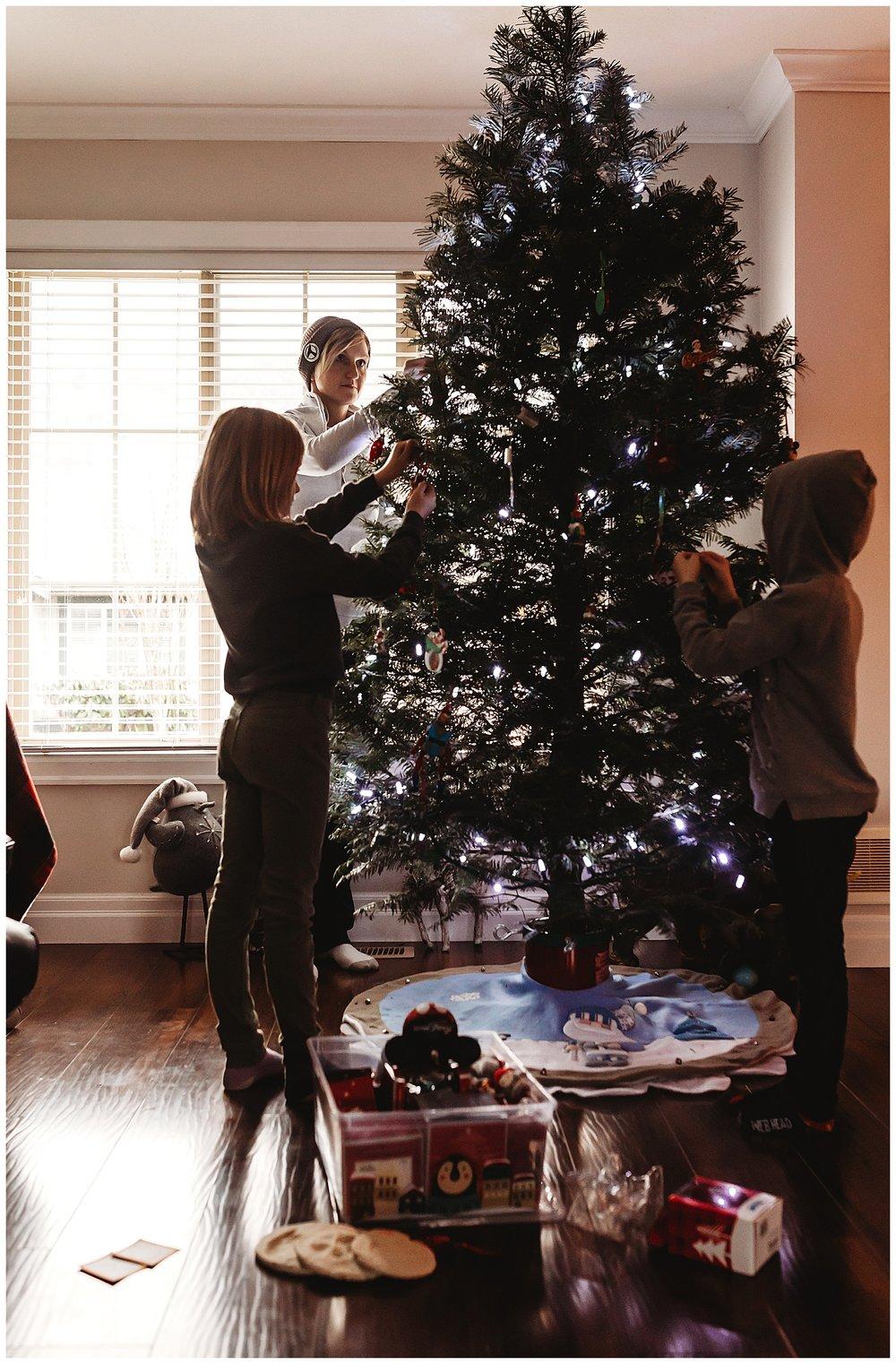 Christmas Trees Chilliwack Anna Hurley Photography 3.jpg