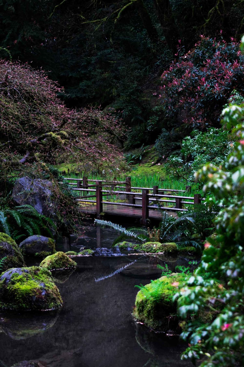 pdxjapanesegarden11