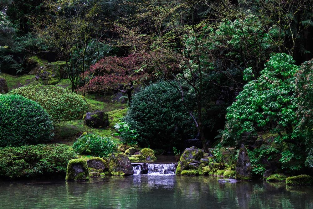 pdxjapanesegarden5
