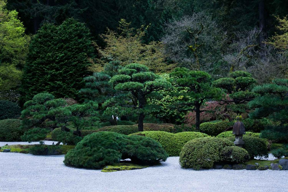 pdxjapanesegarden14