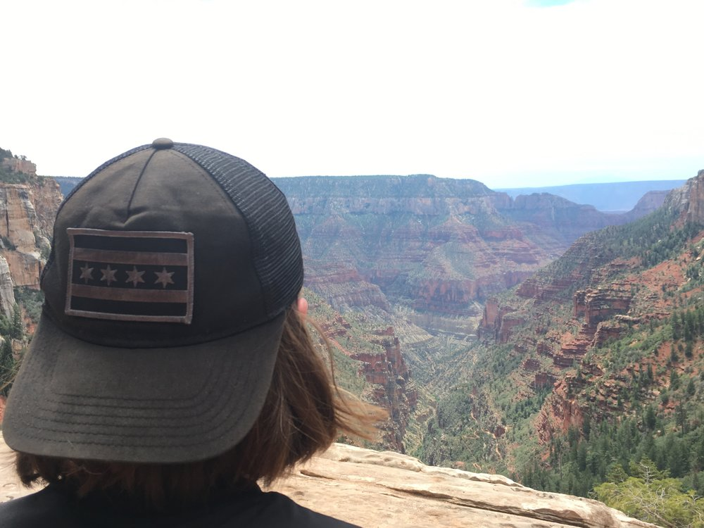 Chicago meets The Grand Canyon
