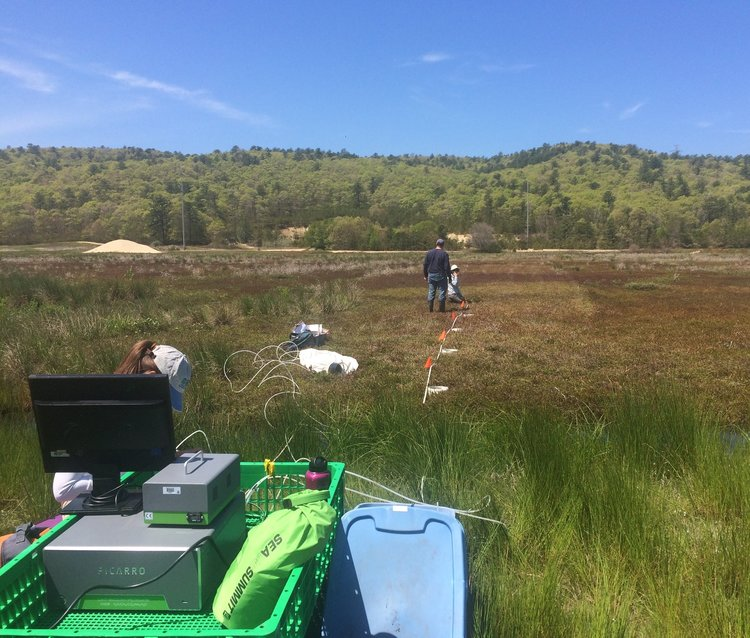 May 23, 2016 | Gas sampling with picaro at Tidmarsh West