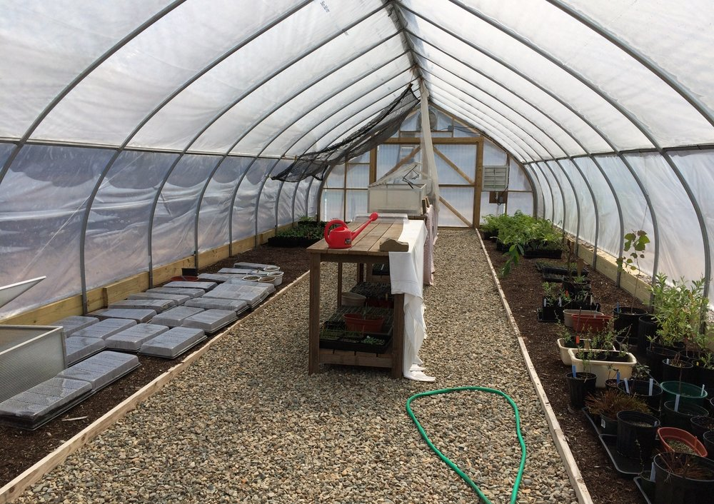 May 5, 2015 | Inside the greenhouse