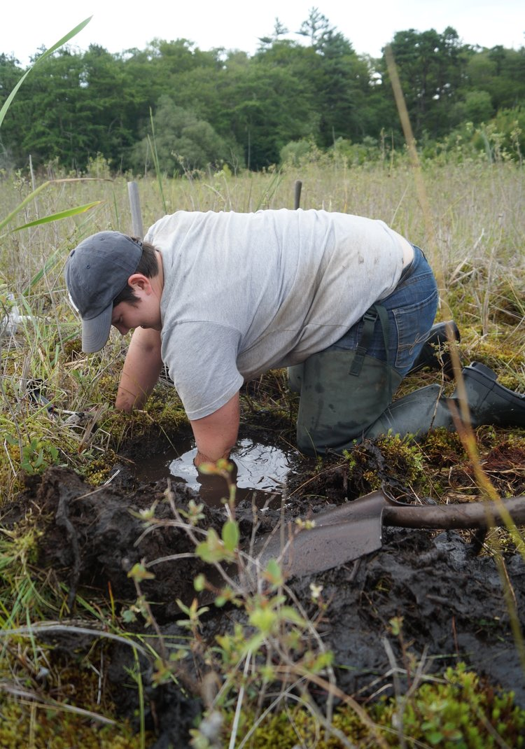July 19, 2015 | Soil sampling TF East