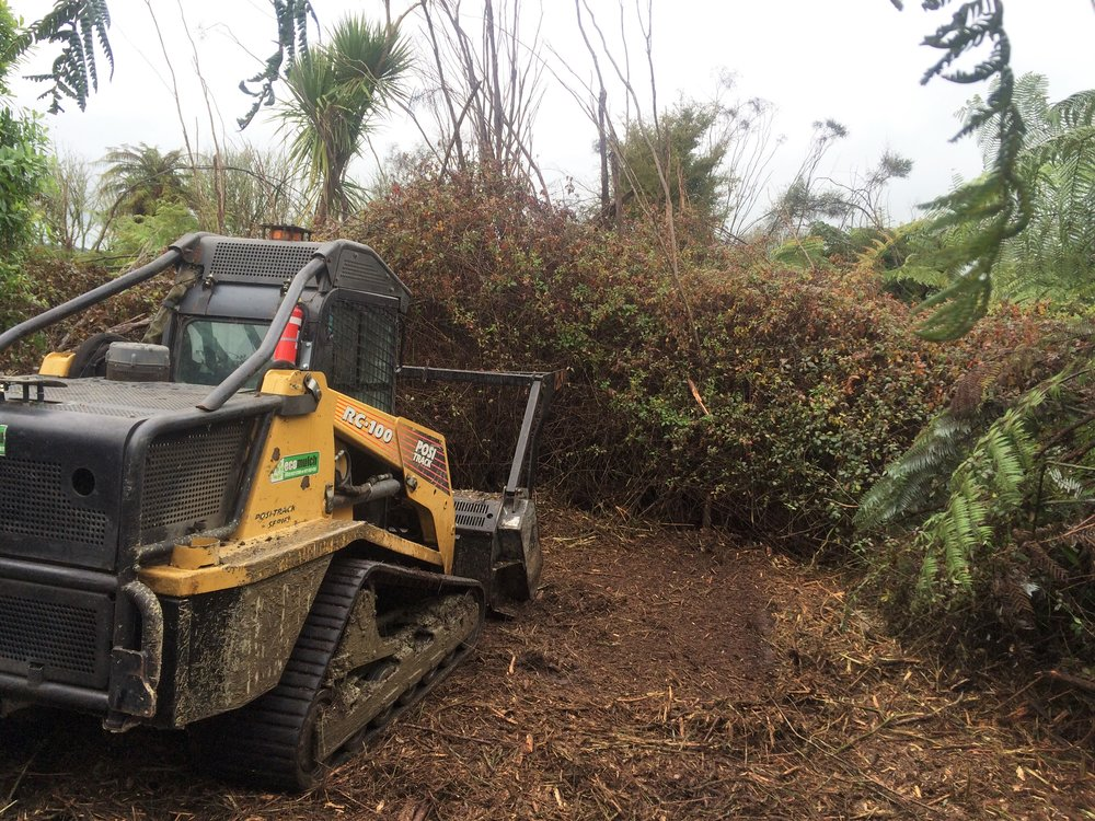 4.  No Bush too dense -   Because our machine is 100 HP with two supporting tracks, we have a light foot print so we can do where other machines would get stuck and then mulch our way through the green wall.