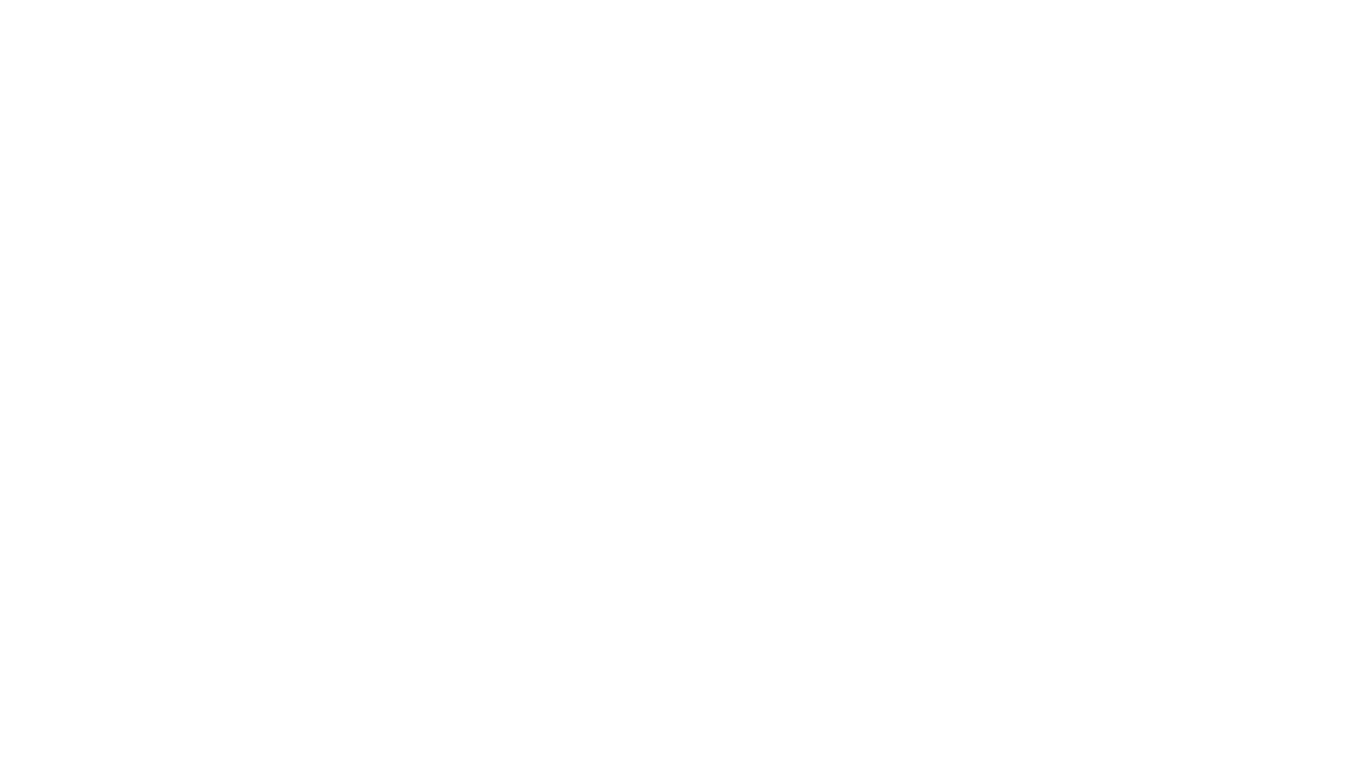 Michael Levitt Productions