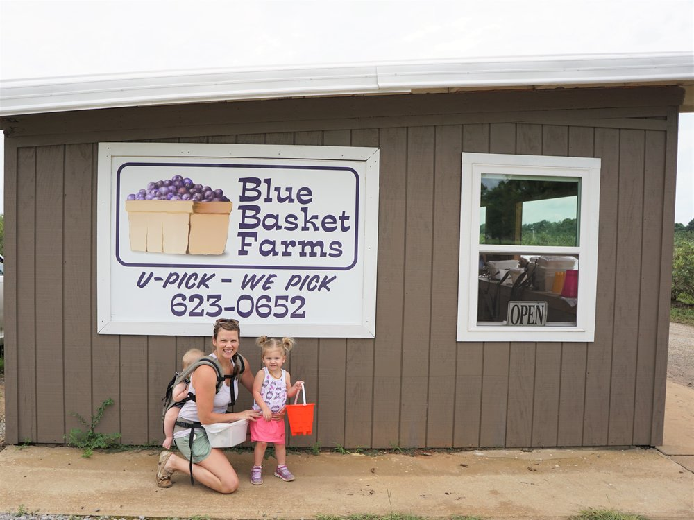 Blue Basket Farms with the kiddies