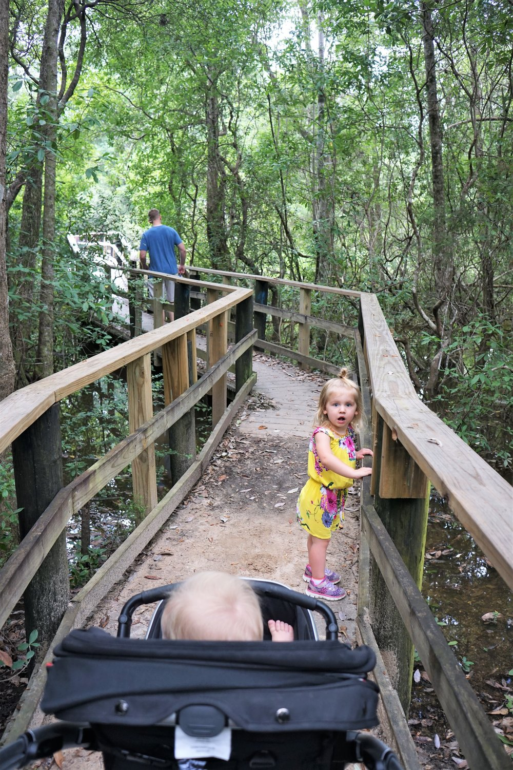 The kids enjoying the swampy views of the Edward Ball Nature Trail at UWF