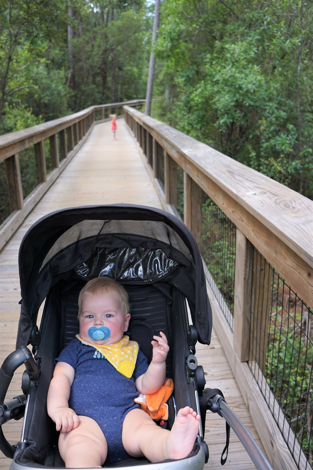 Arcadia Mill is an awesome walking trail in Milton