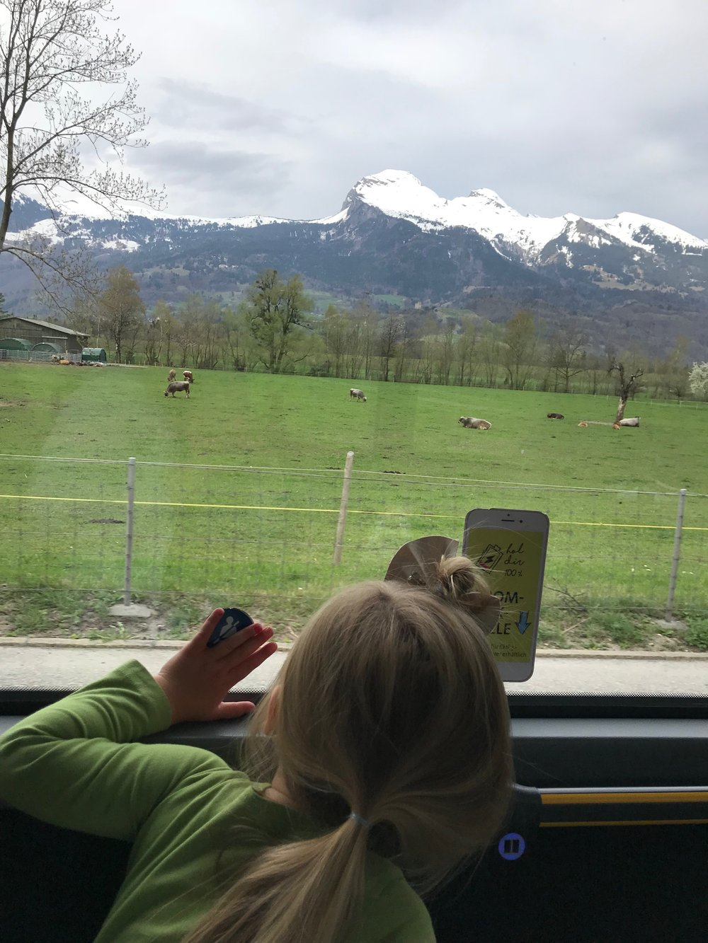 Views in Liechtenstein from the BUS which was FREE since we had a Swiss Rail pass and there are no trains in this country