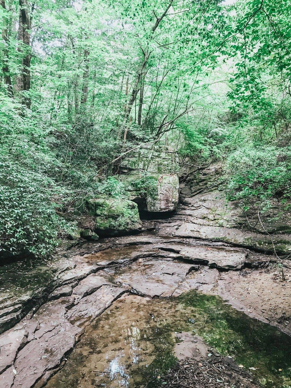 Azalea Cascades at the beginning of the hike