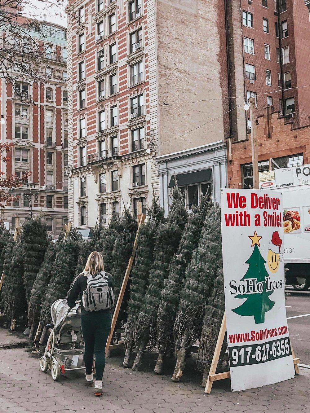 Christmas Tree shipping in SOHO