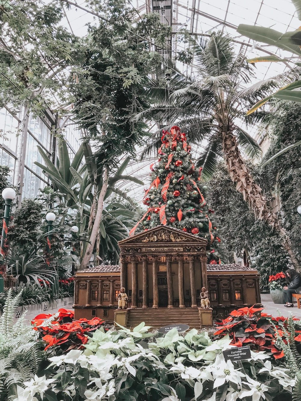The Botanical Gardens at Chirstmas is unreal