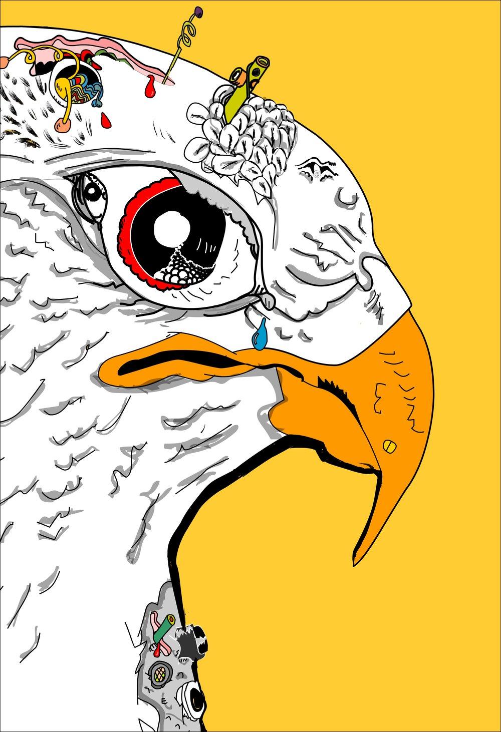 bird10.jpg