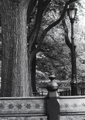 CENTRAL PARK FINIAL- 2002