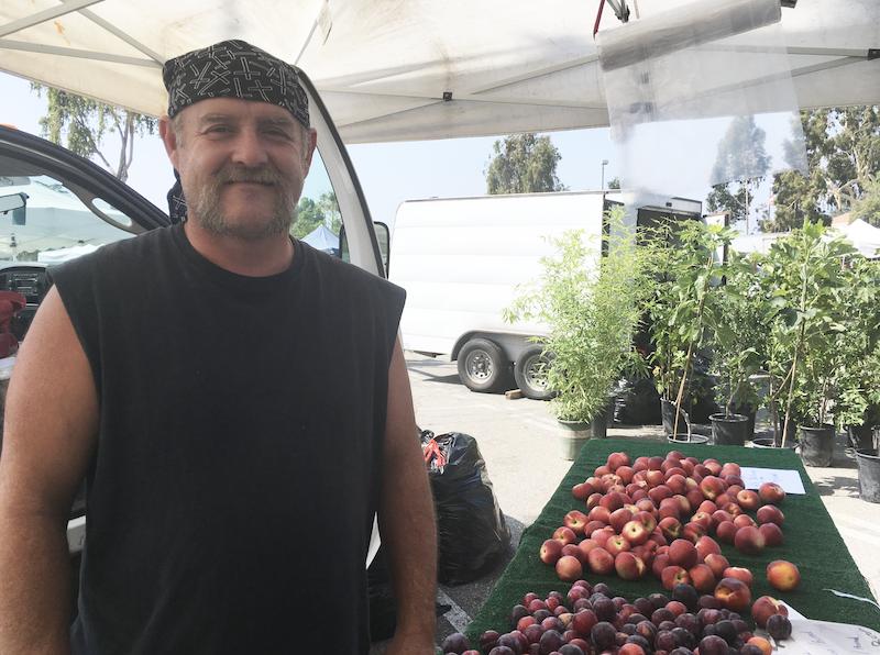 Pasqual and his Santa Rosa plums at the Pasadena farmers market