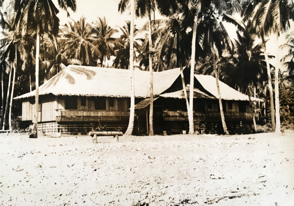 At one time during our years overseas, my family lived in this  Nipa house  in the Philippines. No windows, no electricity, Coleman lanterns and gecko lizards at night.
