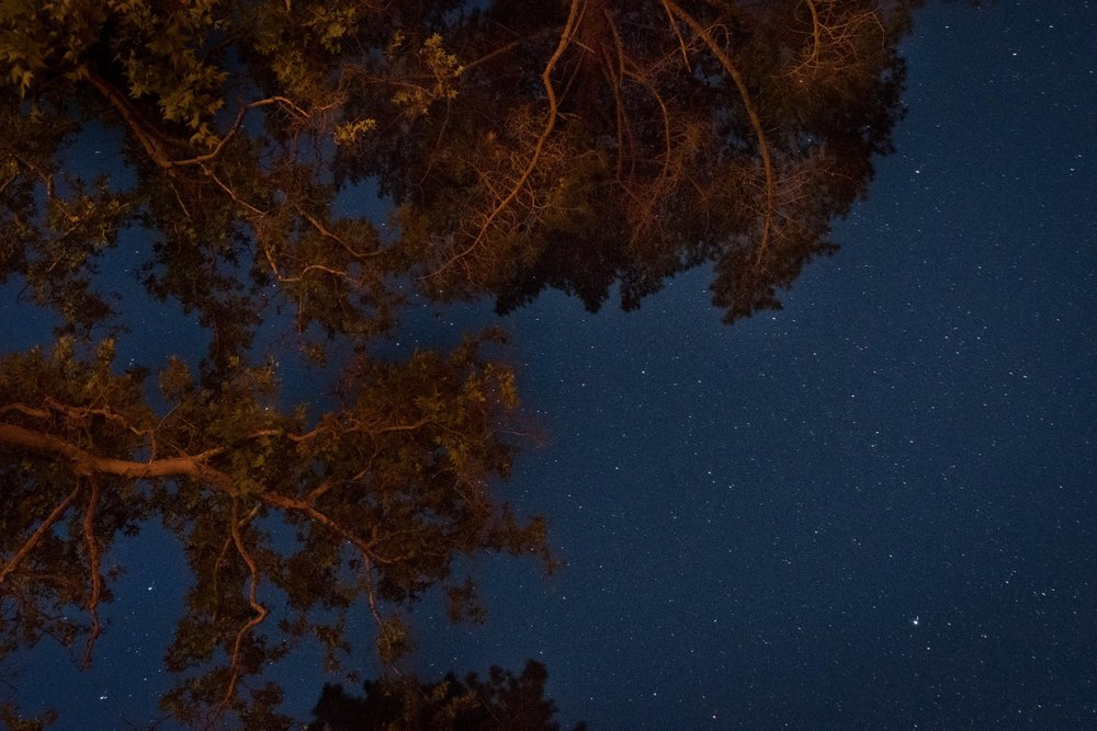Night sky photograph by  Dennis Keeley,  from the Cerro Alto camp site in Atascadero.