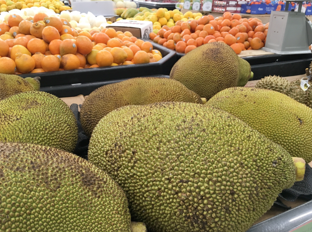 Jackfruit looking disturbingly like beached sea lions at 168, has no food cousin. Therefore it is challenging even to me.