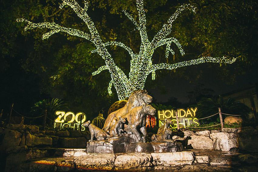zoo lights.jpg