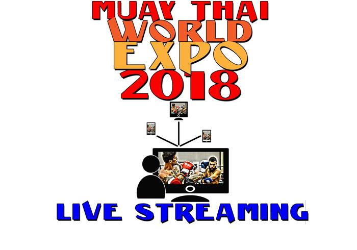MTWE-live_streaming-w.jpg