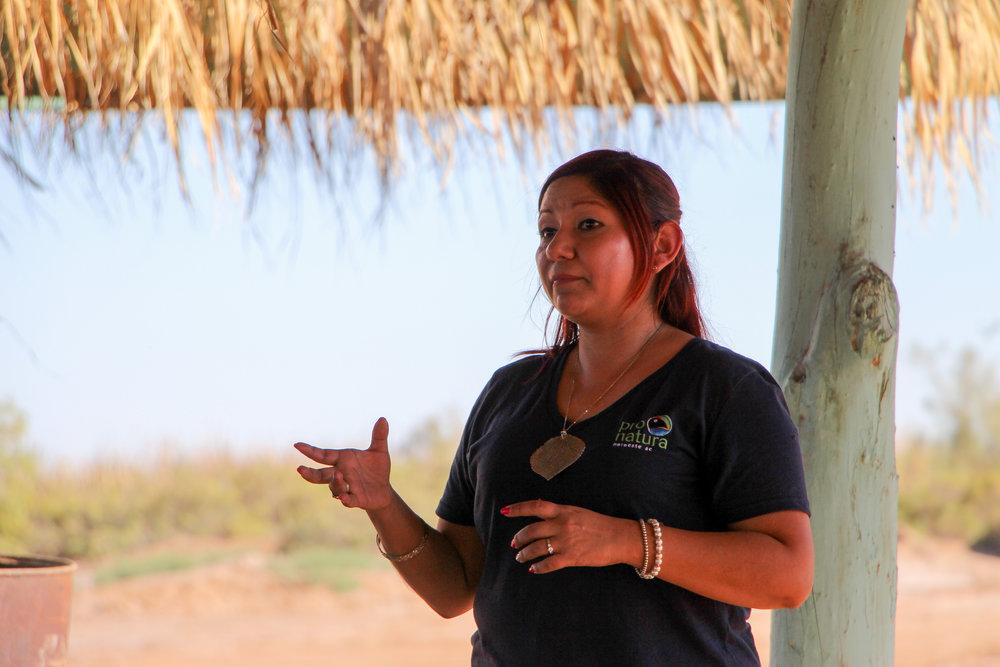 Casandra Yuliana Dimas   ProNatura Noroeste  San Luis Rio Colorado, Sonora
