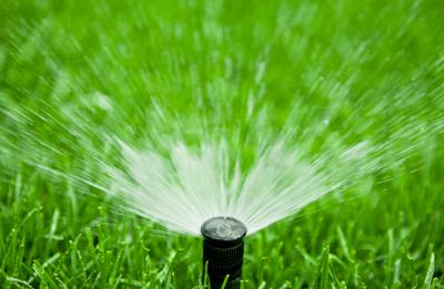 Spray Heads: http://www.romanslawnpro.com/wp-content/uploads/2015/01/irrigation.jpg