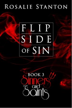 3 Flip Side of Sin-02.jpg