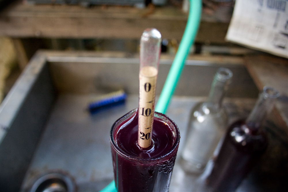 wine_tool-web.jpg