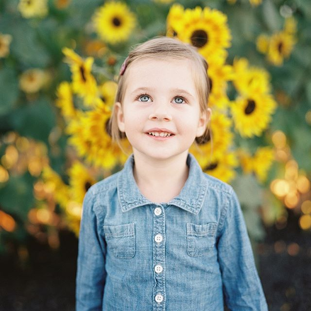 My sweet sweet Olive, October 2015 . . . . . . . . . #childhoodunplugged #letthekids #letthembelittle #family #familysession #bayareafamilyphotographer #familyphotography #familyportraits #makeportraits #thatsdarling #marin #marinfamilysession #norcal #californialight #sanfranciscofamilysession #motherhood #motherhoodthroughinstagram #sonomofamilyphotographer #petalumafamily #petaluma #petalumapumpkinpatch #sunflower