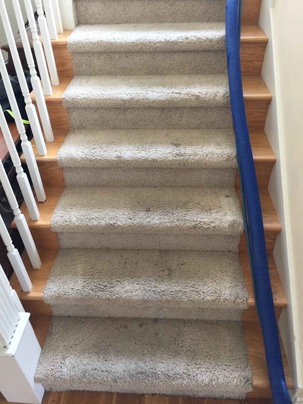 Edmonds carpet cleaning stairs