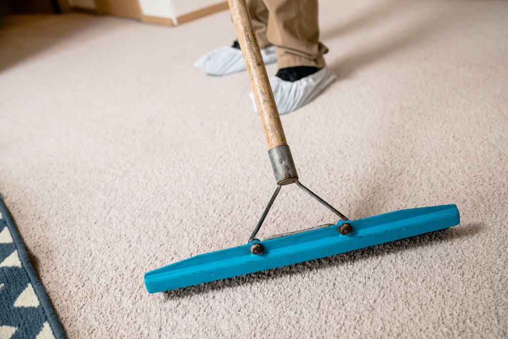 Highest rated Edmonds carpet cleaning