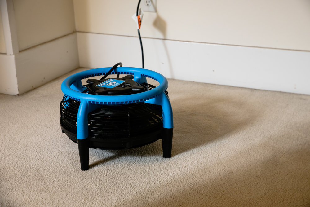 carpet drying fan