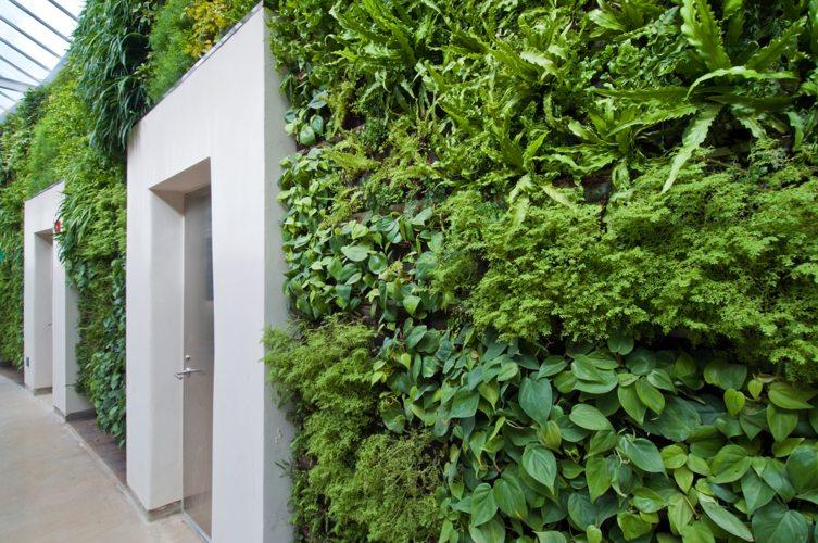 Green wall Vancouver.jpg